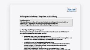 Auftragsverarbeitung: Vorgaben und Prüfung (PDF)